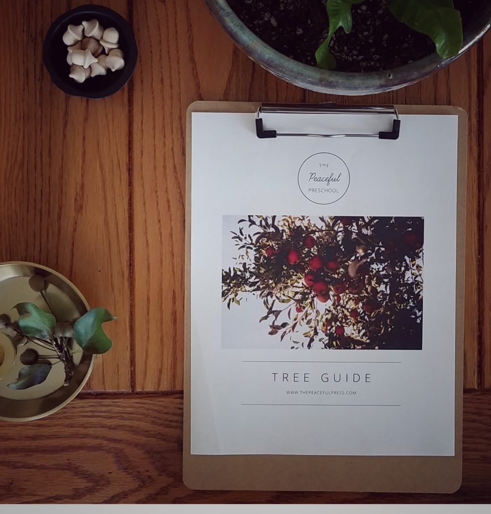 The Tree Guide by the Peaceful Press is a beautiful guide for homeschooling families.