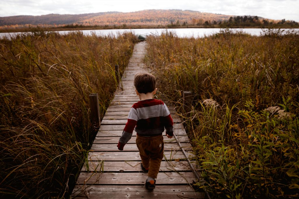 Nature walks are all you need for studying nature in your homeschool.