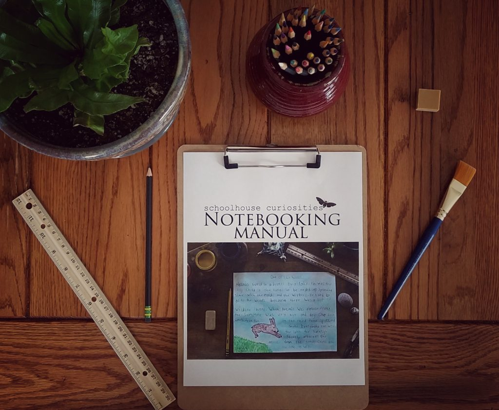 Homeschooling families should look into Notebooking with their child.